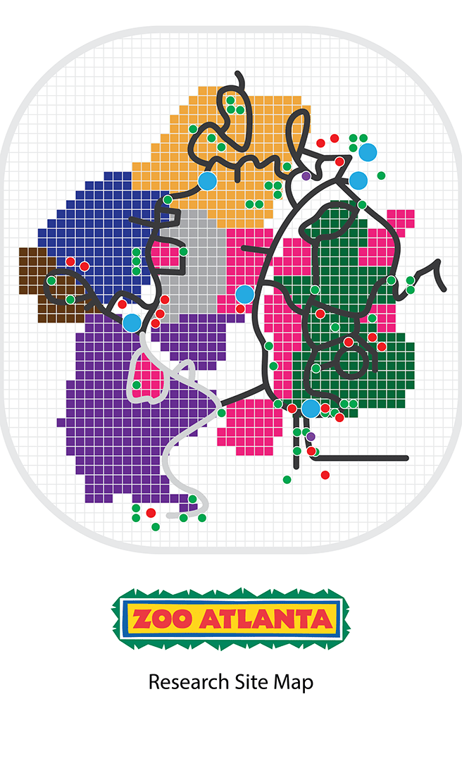 Site map of the Zoo. Full illustration.